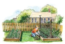 GARDENS, SEEDS & MORE, OH MY! / Ideas and Tips on Gardening, Farming, and Homesteading. / by Off The Vine Market