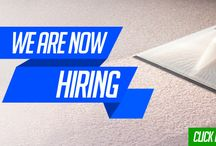 Carpet Cleaning tech wanted
