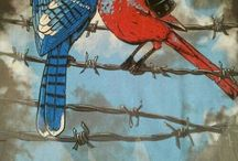 korkan kuşlar