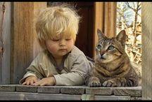 Animals, our friends / Sa iubim si animalele, sa le ocrotim, sa le respectam, sa nu ramanem indiferenti la actele de cruzime, neglijarea, abandonul.