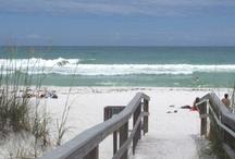 I love Florida! / by Jennifer Langham