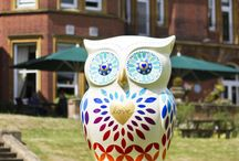 The Big Hoot / We are proud to be one of the official sponsors of the Big Hoot, Birmingham's biggest art project yet, which involves over 90 beautifully designed 5ft tall owls flying into the city and the surrounding districts. Come and say hello to our Love Owl and visit www.thebighoot.co.uk to follow the full Big Hoot Trail!