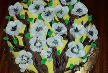 Moje vlastní výroba, dorty cakes