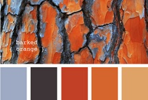 Colour schemes / Burnt orange