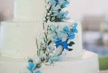 N & N Wedding
