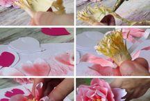 Pamper flower