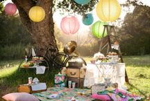 picnics and parties