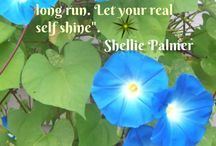 Quotes To Live By / by Shellie Palmer