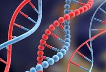 imagem nutrigenômica 1