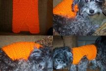 Dog's dress