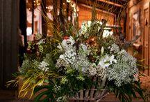 Blooms / leafy, greenery, floral, cactus, cactii, vases, flowerpots, arrangements