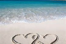 Valentine's Day Specials / Take your Sweetheart on a Romantic Trip www.carytravelexpress.com 847-639-3300  Follow us on Facebook.com/carytravelexpress Twitter-@CaryTravelExp