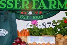 CSA / Community Supported Agriculture