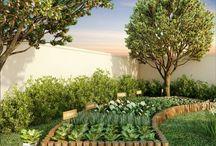 Jardim / Horta
