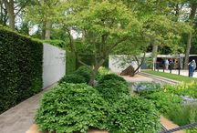 Courtyard insipiration / what to do with lower garden
