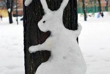 Winter Cold Snow♡
