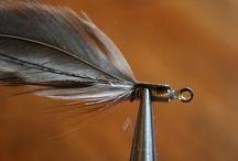 feather earnings