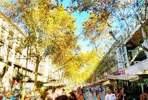 Barcelona / by Nida Ababtain