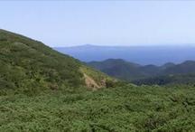 north-east Hokkaido / Rausu,about 70km distance from Nakashibetsu Airport Tarminal.And about 131km distance from Memanbetsu Airport Tarminal.
