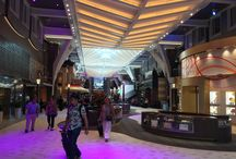 Aboard the Harmony of the Seas! / Water dancing, incredible dining and Broadway shows!  These are only a few events to do on the Harmony of the Seas.  This ship has absolutely EVERYTHING, including surfing right on board!