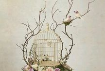 Special bird cages