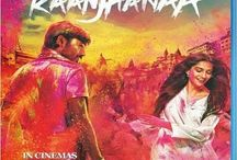Bollywood Movies 2013