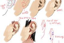 귀 / 귓바퀴 참고자료