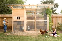 Build a Custom Chicken Coop! / At Sparr Building and Farm Supply, we carry everything you need to build your own custom chicken coop for the hens! Here are some great ideas we would like to share!