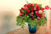 Właściwości Wirtualnego Florysty / Tutaj znajdziecie Państwo właściwości jakimi cechuję się Wirtualny Florysta 3D www.florysta3d.pl
