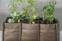 Pflanztaschen von BACSAC / Der Pflanzsack ist, platzsparend und mobil, wunderbar mit den Gegebenheiten des modernen Großstadtdschungels zu vereinbaren. Leicht und bunt - zudem zu 100% recycelbar - kleidet der Bacsac Deine Pflanzen in ein stylisches und zugleich umweltfreundliches Gewand.