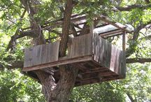 tree house kids