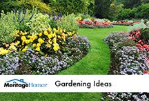 Gardening Ideas / by Meritage Homes