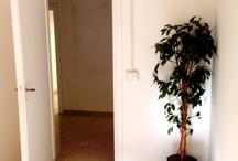 U.I. Office / Via Pasquale Leonardi Cattolica N.3 - Rome - IT