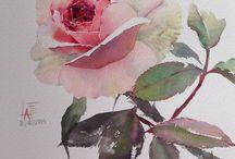 la fe rose watercolor
