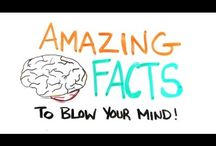 Did You Know? / by Oskar Lindgren