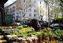Hamburg Tipps / Wir empfehlen euch die besten Ausflugsziele und Hotspots in Hamburg!