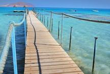 Hurghada - Egyiptom utazás / Hurghada Egyiptom legnépszerűbb üdülőparadicsoma. A városban minden a nyaralók kényelméért épült: a hosszú bazársorok, a változatos éttermek és kávézók, valamint a szórakozóhelyek és búvárközpontok. Last minute Hurgada utazás ajánlatok: http://www.divehardtours.com/Hurghada/