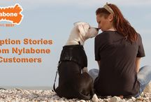 Dog Rescue & Shelter Stories / Tell us your dog's adoption story for a chance to be featured on our website and in our monthly newsletter. Tell us why your adopted dog has made an amazing addition to your family and if your dog is a fan of the Nylabone brand.  / by Nylabone Products