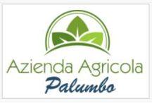 PRODUZIONE AGRICOLA BIOS / https://www.facebook.com/profile.php?id=100008326213107
