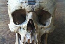 FREEMASONIC CODE OF TREPANATION FOR DEVOURING OF A HUMAN BRAIN OR BOWL FROM A SKULL