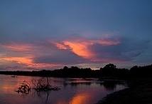 Zambia / Natuurliefhebbers kunnen hun hart ophalen in het Afrikaanse Zambia. Het land van de wandelsafari's, de Victoriawatervallen en de grote Zambezi rivier. Een land vol meren en moerassen, vele vogelsoorten en een prachtige ongerepte natuur.' En stel je voor: In Zambia worden liefst zeventig talen gesproken!