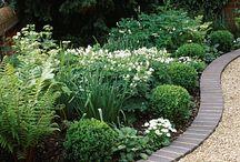 Susan Ritchie planting ideas / Planting ideas