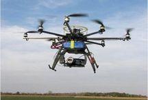 Drone / Ladybug & Firefly