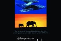 Top 10 Documentary Movies