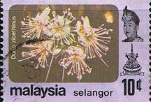 Malaya - Selangor Stamps