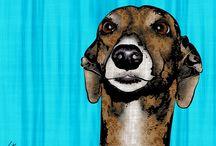 Hound pop art / snazzy hound pics