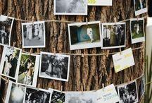 Rhonda's wedding ideas / Rustic.  Outdoor