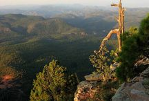 Day Trip: Mogollon Rim / A day tip from Sedona, take I-17 south to Rt 260 and follow towards Payson. When 260 ends, turn left onto Rt 87. Forest Road 300 will be on the right in about a mile.  A long drive that takes you along breathtaking scenic views.