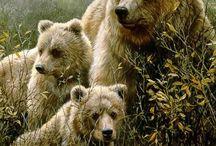 Mundo  Fauna  & Naturaleza