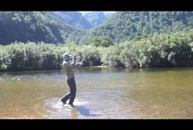 Fly Fishing Videos